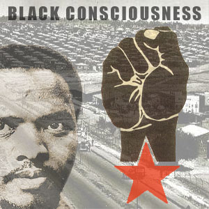 essays black consciousness movement The black consciousness movement of south africa instigated a social, cultural, and political awakening in the country in the 1970s by the mid-1960s, major anti.